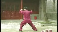 张东武 陈式太极拳老架一路背向演练