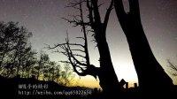 夜合树——蒙台梭利儿童启智音乐 植物音乐 CD2