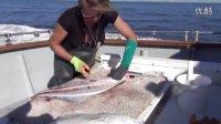 四海钓客:看阿拉斯加人如何收拾大比目鱼