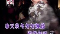 梅艳芳 - 夏日恋人 [HQ]