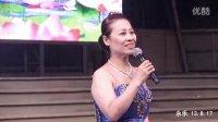 河南省龙线艺术团大型公益《黄水谣》