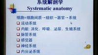 系统解剖学01