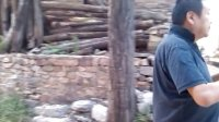 【拍客日记】——黄岩老师在任村又发现了一个好的寺庙