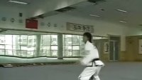 ITF四段纪磊的个人动作剪辑