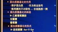 中国医科大学细胞生物学30