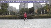 广场舞 江南style 骑马舞 分解动作 教学版 正背面演示