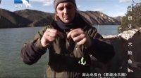 西班牙钓大鲶鱼