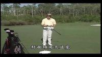 大卫利百特高尔夫教学视频-从新手到球王