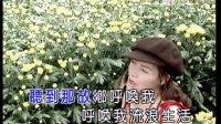 龙飘飘 - 黄昏的故乡(花仙子)