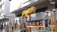 广东佛山舞狮 佛山舞狮子表演醒狮队 高清