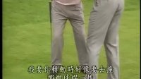 大卫利百特高尔夫教学视频-全挥杆教学02