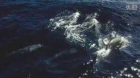 Deep_Water_en_yugao