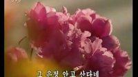 离不开您的怀抱(朝鲜歌曲)
