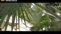 度假胜地--小棕榈岛酒店