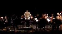 """李传韵在保加利亚鲁塞国际音乐节的演出时的返场节目""""女人香""""!"""