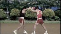 散打 拳法 13