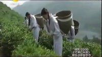 黑茶时代--安化黑茶时代的到来--2  QQ2499401658