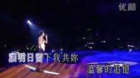 刘德华Wonderful World 香港2007演唱会 上部