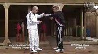 咏春拳教学 lesson 53