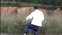 传统杨式太极拳85式