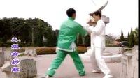 彭南系咏春拳系统教程--小练头(小念头)