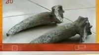 齐齐哈尔碾子山区发现珍贵文物