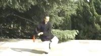 武当三丰太极剑教程