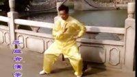 彭南系咏春拳系统教程--寻桥