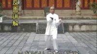 永春白鹤(苏瀛汉系列)A千字打