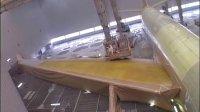 国泰航空接收其机队第100架飞机