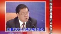 战略机遇期与中国企业的发展