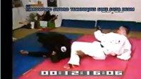 大师欧文·索托的柔术示范