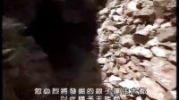 [NHK][纪录片]大蒙古帝国系列(1):蒙古大都.avi_标清
