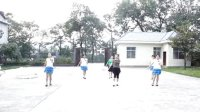 zhanghongaaa 广场舞 自编桑巴 最新16步广场舞教学版 原创