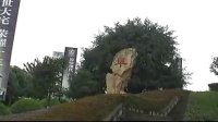 luan paide