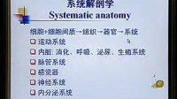 中国医科大学 系统解剖学 01