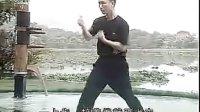 张保系咏春拳系统教程(2)   麦耀明讲解