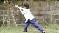 中國武術名拳錄---功力拳