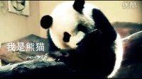超级熊猫PK韩寒王璐丹