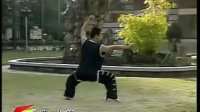 南少林武术-南派太祖拳 1