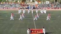 东林武协2012校运会表演(修正版)