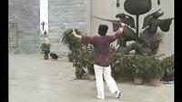 王西秀太极剑