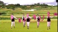秧歌-流行 广场舞
