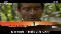 纪录片 荒野求生要领大全 国语 高清 中文字幕