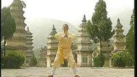 释延王演示-易筋经(上 清晰版)教学 少林拳 y74.2