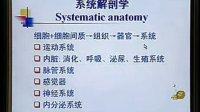 中国医科大学系统解剖学精品课程教学视频 01(免费)