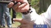 2011客友张雪平钓鱼教学片-9搓拉饵的正确方法
