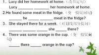 小学英语语法一般过去时习题讲解