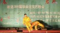 河南科技大学动科院晚会之武术表演