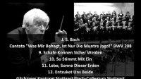 """巴赫 - 狩猎康塔塔:IX """"羊儿可以平安吃草了"""" BWV 208 【星代数】"""